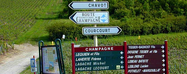 champagne-day-tour-1.jpg